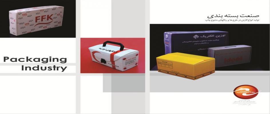 کارتن پلاست ، چاپ ، بسته بندی ، چاپ و بسته بندی با کارتن پلاست