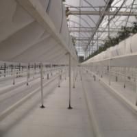 صنایع کشاورزی ، کارتن پلاست ، بستر گلخانه ، نانوپلاست ، کارتن پلاست کاشان